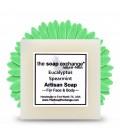 Eucalyptus & Spearmint Bar Soap
